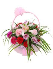 26枝各色康乃馨,1朵粉色百合,绿叶间插