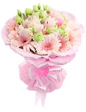 20支粉色太阳花,桔梗间插