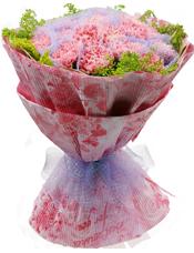 20枝粉色康乃馨精美包装,黄莺点缀