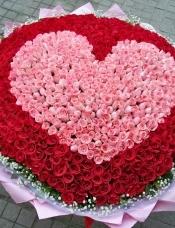 红玫瑰、粉玫瑰共999枝,满天星绿叶围绕。