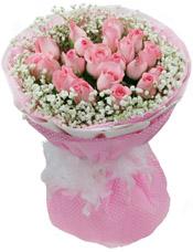 19枝粉玫瑰,满天星点缀