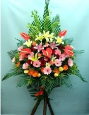 时尚特式恭贺花篮以红掌、百合、玫瑰、太阳花、孔雀组成,配以木制高架,以绿叶及太阳花作装饰。部份鲜花品种,将因应季节而作出适当的调整。