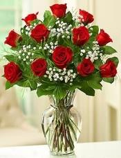 21枝高级红玫瑰加配花搭配间插