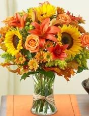 玫瑰,太阳花,百合花,菊花绒球,干橡树叶与拉菲草绑在一个玻璃收集花瓶。
