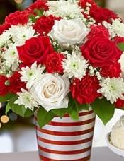 长茎红玫瑰,长梗白玫瑰,长茎红色康乃馨,红色迷你康乃馨,白菊花