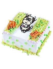Taurus金牛座专属,方形鲜奶蛋糕,四周奶油花装饰