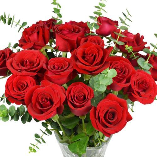 16朵玫瑰花代表什么意思