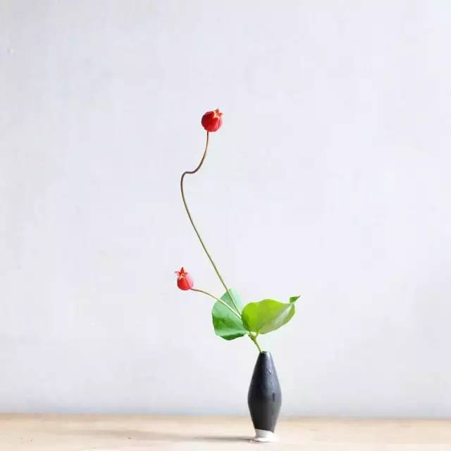 鲜花插花艺术高清图