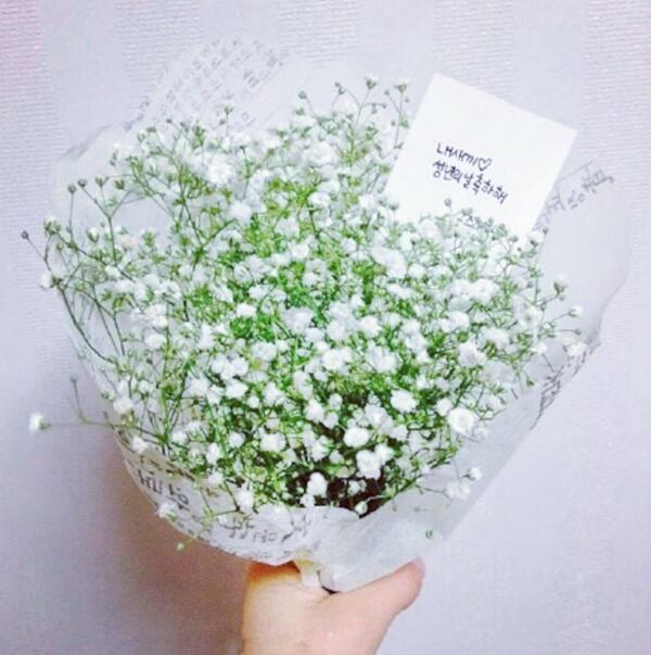 白色满天星花语,我爱你胜过爱自己